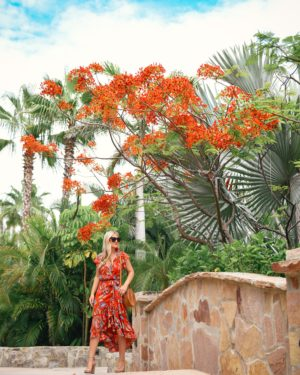 WAYF-Floral-Dress-Lo-Murphy-Woven-Bag-Kendra-Scott-Earrings-Red-Dress-Under-100-travel-blogger-Cabo-Mexico